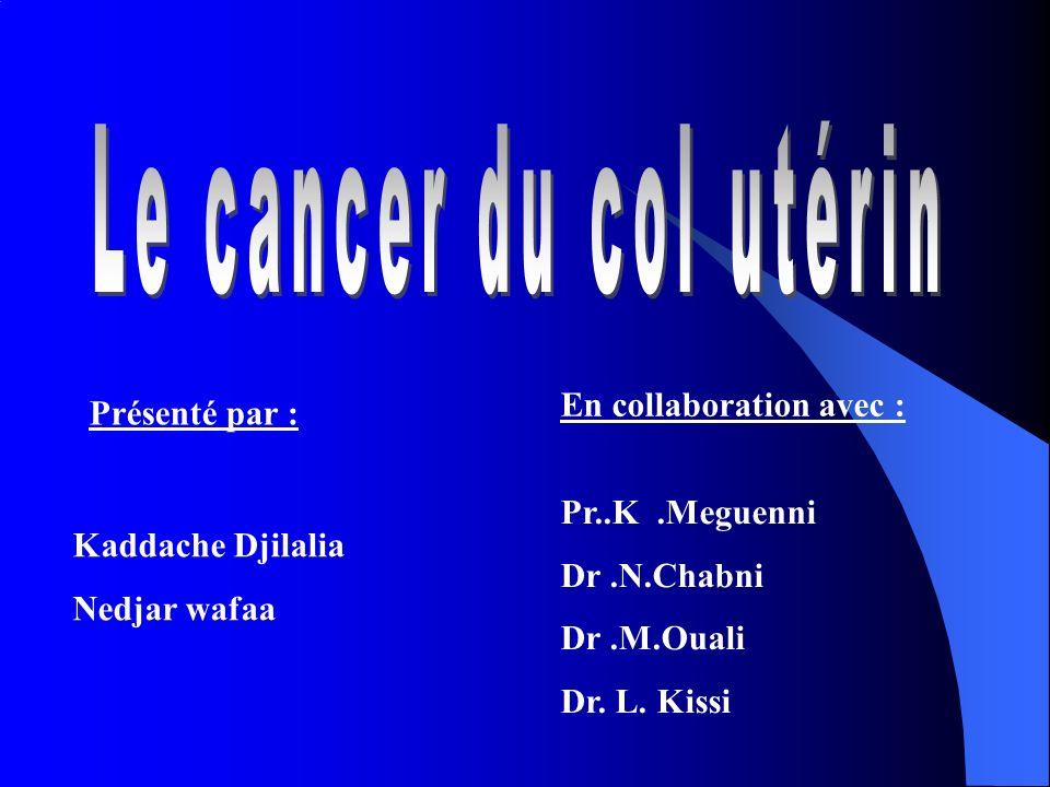 Présenté par : Kaddache Djilalia Nedjar wafaa En collaboration avec : Pr..K.Meguenni Dr.N.Chabni Dr.M.Ouali Dr. L. Kissi