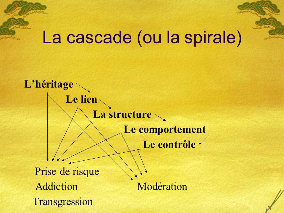 La cascade (ou la spirale) Lhéritage Le lien La structure Le comportement Le contrôle Prise de risque Addiction Modération Transgression