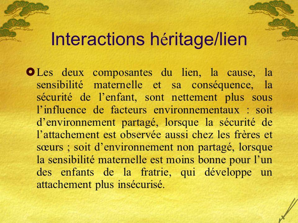 Interactions h é ritage/lien Les deux composantes du lien, la cause, la sensibilité maternelle et sa conséquence, la sécurité de lenfant, sont netteme