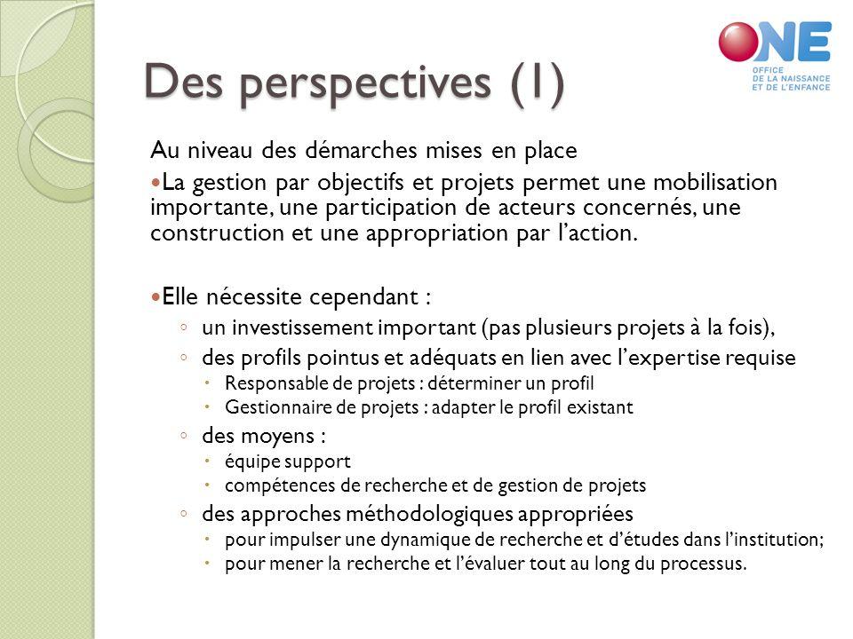 Des perspectives (1) Au niveau des démarches mises en place La gestion par objectifs et projets permet une mobilisation importante, une participation de acteurs concernés, une construction et une appropriation par laction.