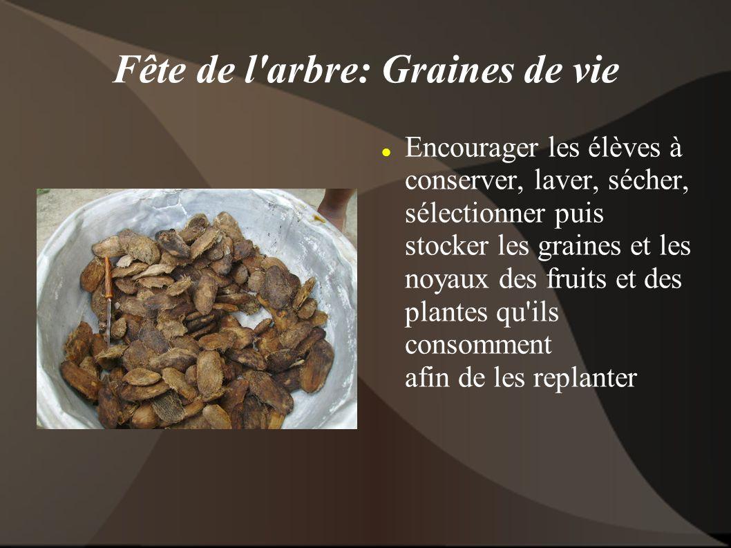 Fête de l arbre: Graines de vie Encourager les élèves à conserver, laver, sécher, sélectionner puis stocker les graines et les noyaux des fruits et des plantes qu ils consomment afin de les replanter