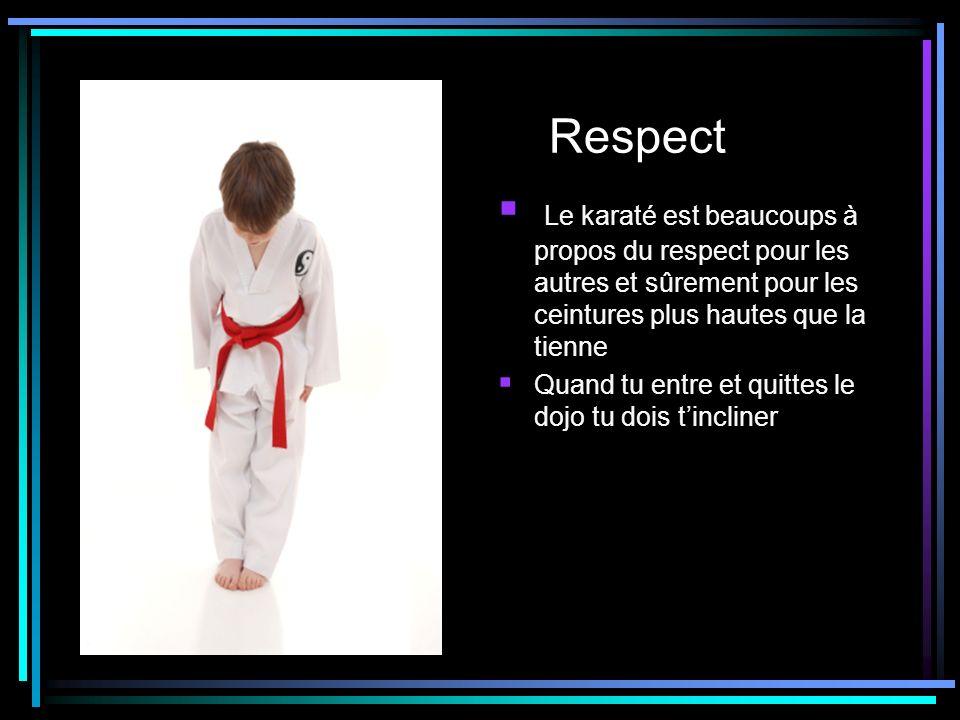 Respect Le karaté est beaucoups à propos du respect pour les autres et sûrement pour les ceintures plus hautes que la tienne Quand tu entre et quittes