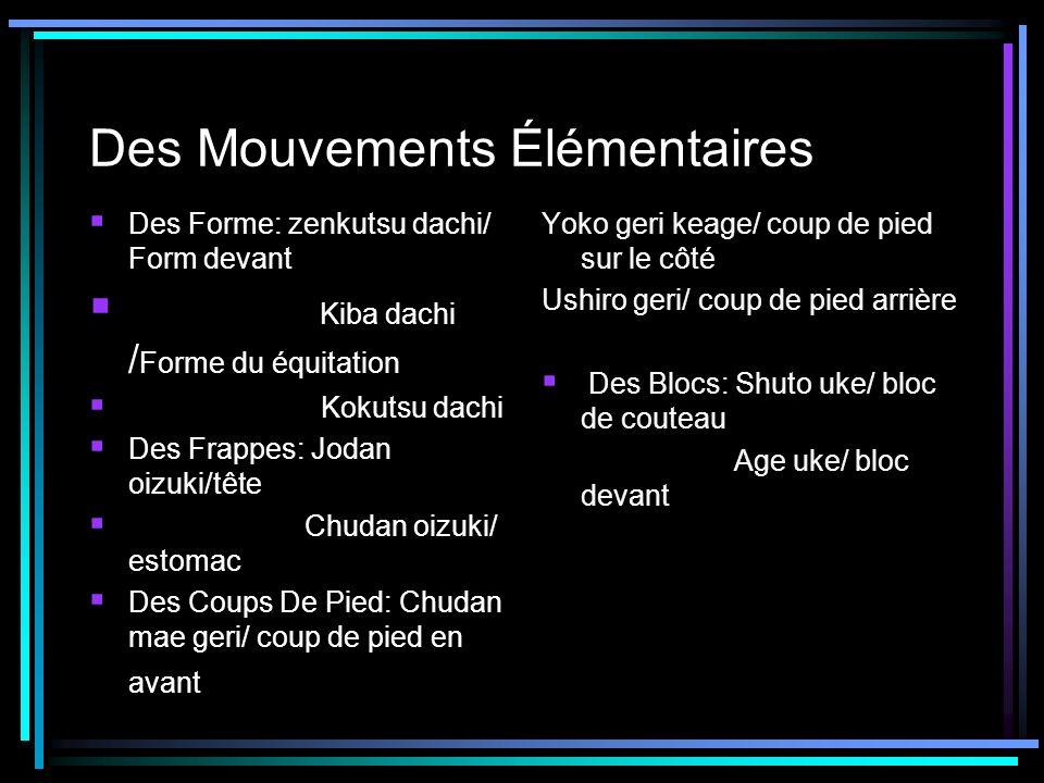 Des Mouvements Élémentaires Des Forme: zenkutsu dachi/ Form devant Kiba dachi / Forme du équitation Kokutsu dachi Des Frappes: Jodan oizuki/tête Chuda