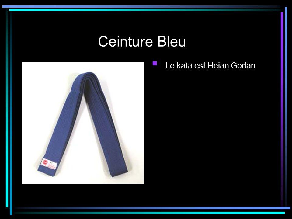 Ceinture Bleu Le kata est Heian Godan