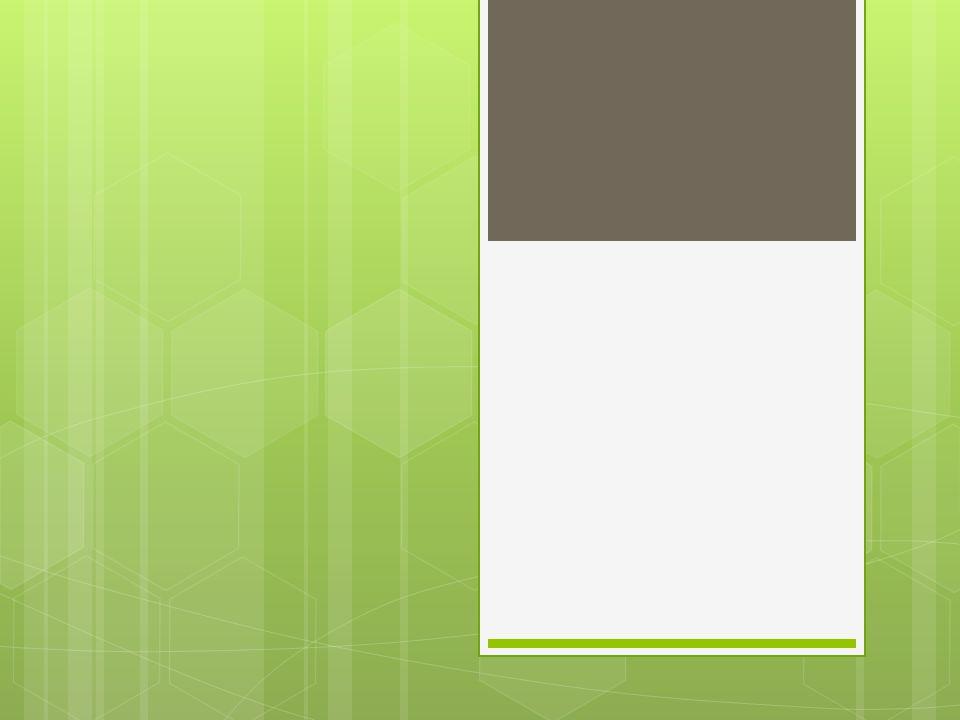 Groupes Ameen, Shen, Aziza, Lorenzo Krysten, Tim, Ayla, Mimi Dylan, Kalli, Mackenzie Rebecca, Emma, Kaitlyn Mei, Georgina, Morgan Nora, Allison C., Sydney Zoe, Evana, Alison B.