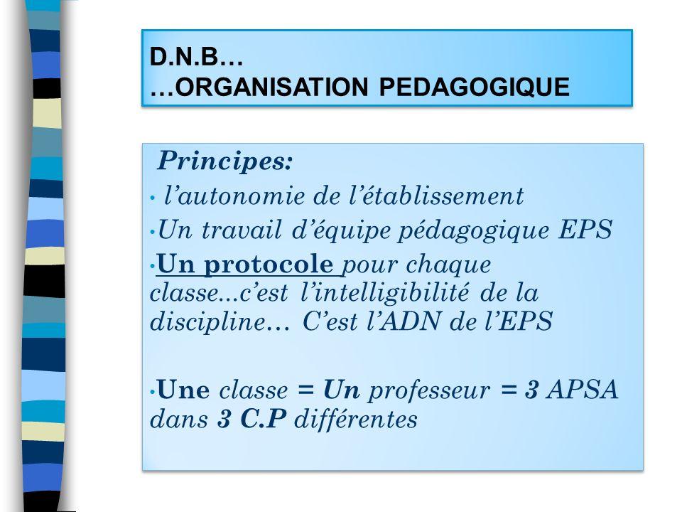 D.N.B… …ORGANISATION PEDAGOGIQUE Principes: lautonomie de létablissement Un travail déquipe pédagogique EPS Un protocole pour chaque classe...cest lin