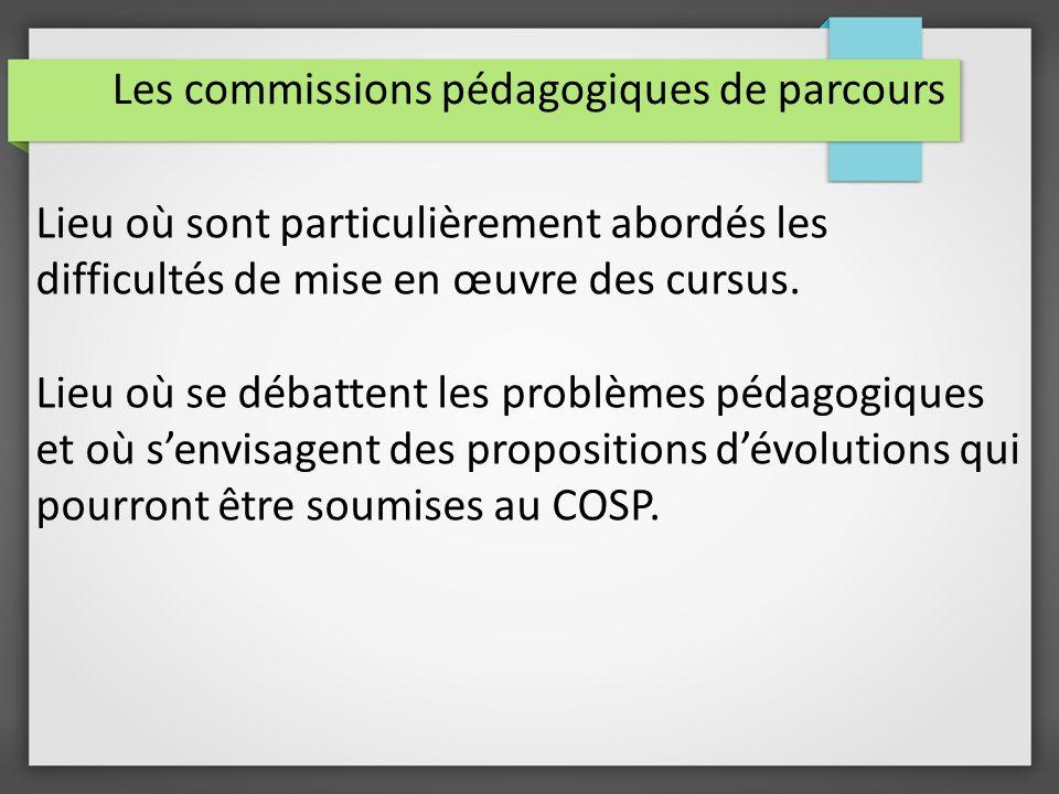 Les commissions pédagogiques de parcours Lieu où sont particulièrement abordés les difficultés de mise en œuvre des cursus.