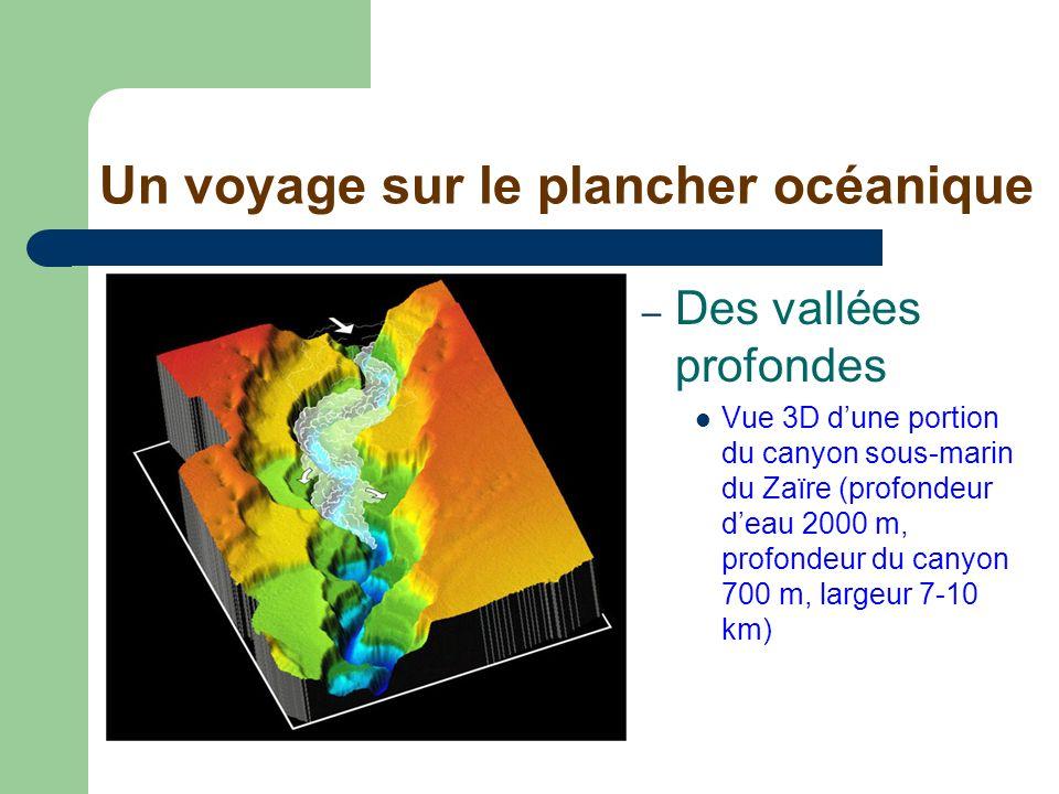 Un voyage sur le plancher océanique – Des vallées profondes Vue 3D dune portion du canyon sous-marin du Zaïre (profondeur deau 2000 m, profondeur du c