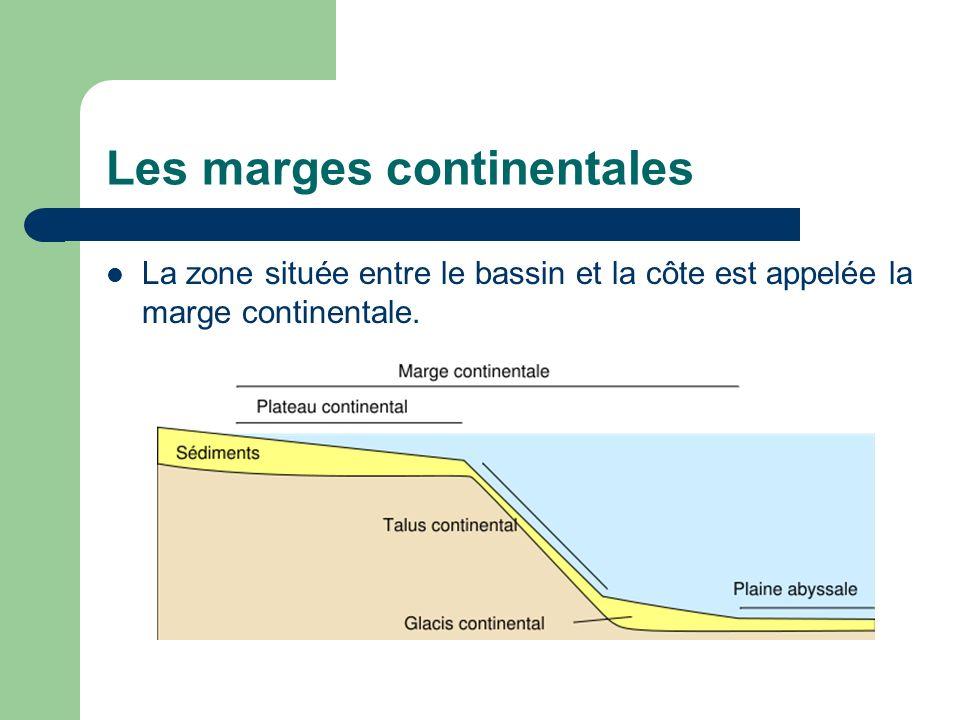 Les marges continentales La zone située entre le bassin et la côte est appelée la marge continentale.