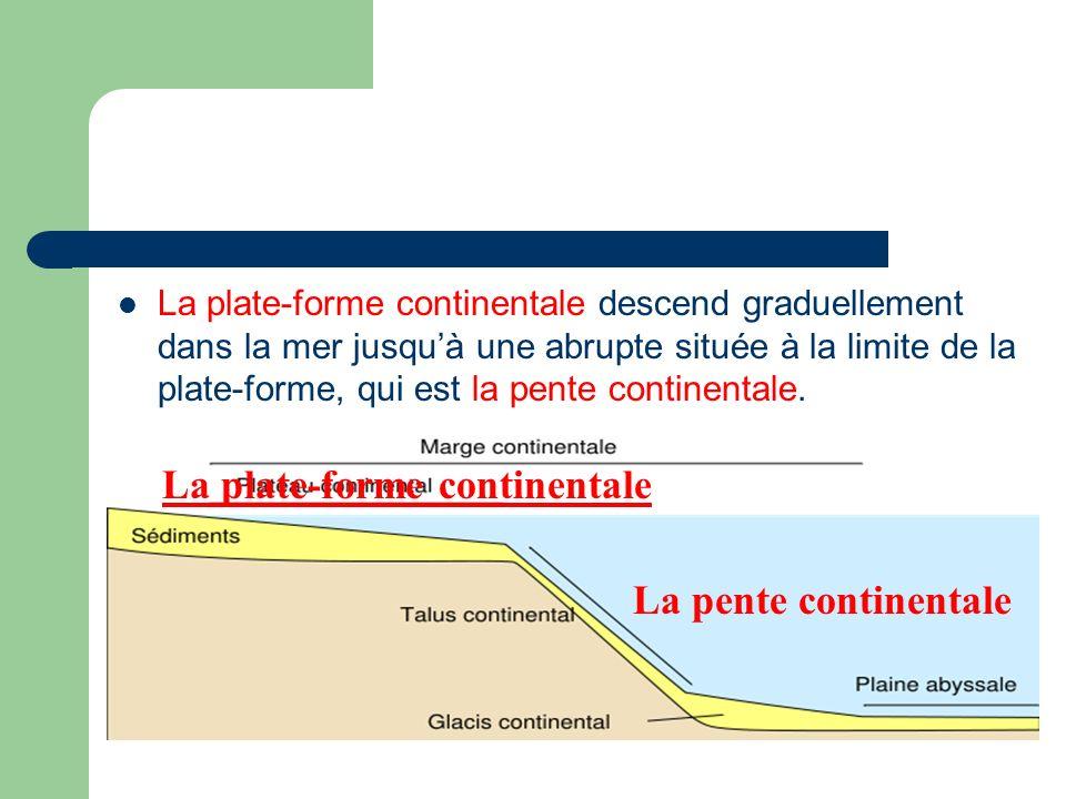 La plate-forme continentale descend graduellement dans la mer jusquà une abrupte située à la limite de la plate-forme, qui est la pente continentale.