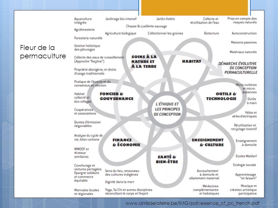 Aller voir ici les phases du toit dans le rapport...