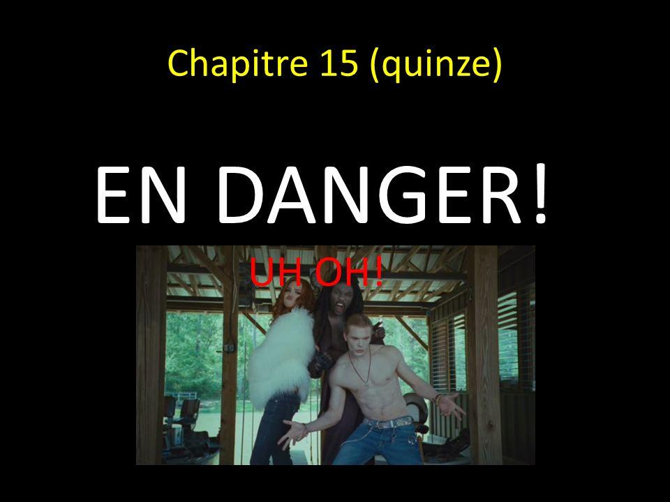 Chapitre 15 (quinze) EN DANGER! UH OH!