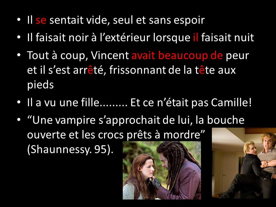 10.Quest-ce que elle doit faire. Comment est-ce que Vincent a réagi à la reaction de Camile.