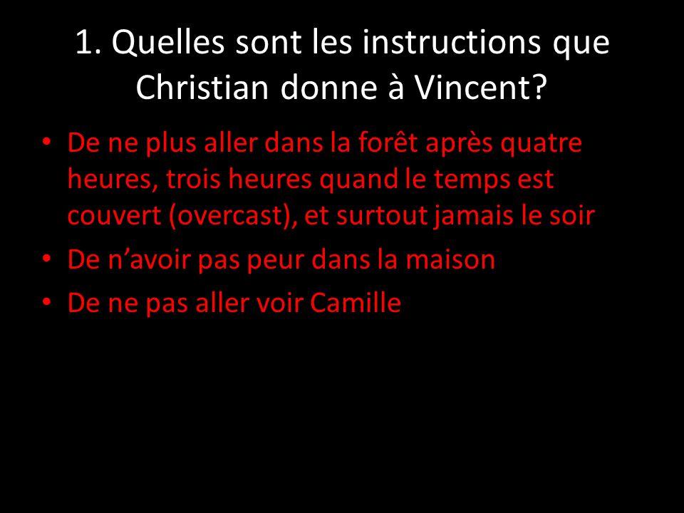 11.Comment se sentait Vincent après le depart de Camille.