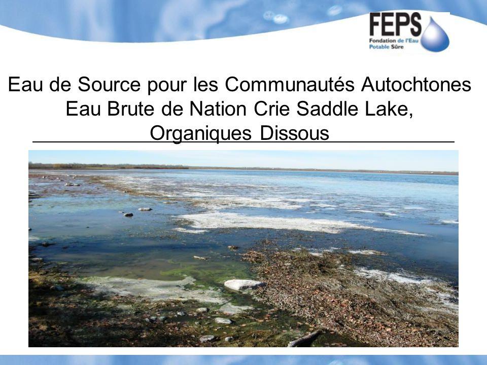 Eau de Source pour les Communautés Autochtones Eau Brute de Nation Crie Saddle Lake, Organiques Dissous