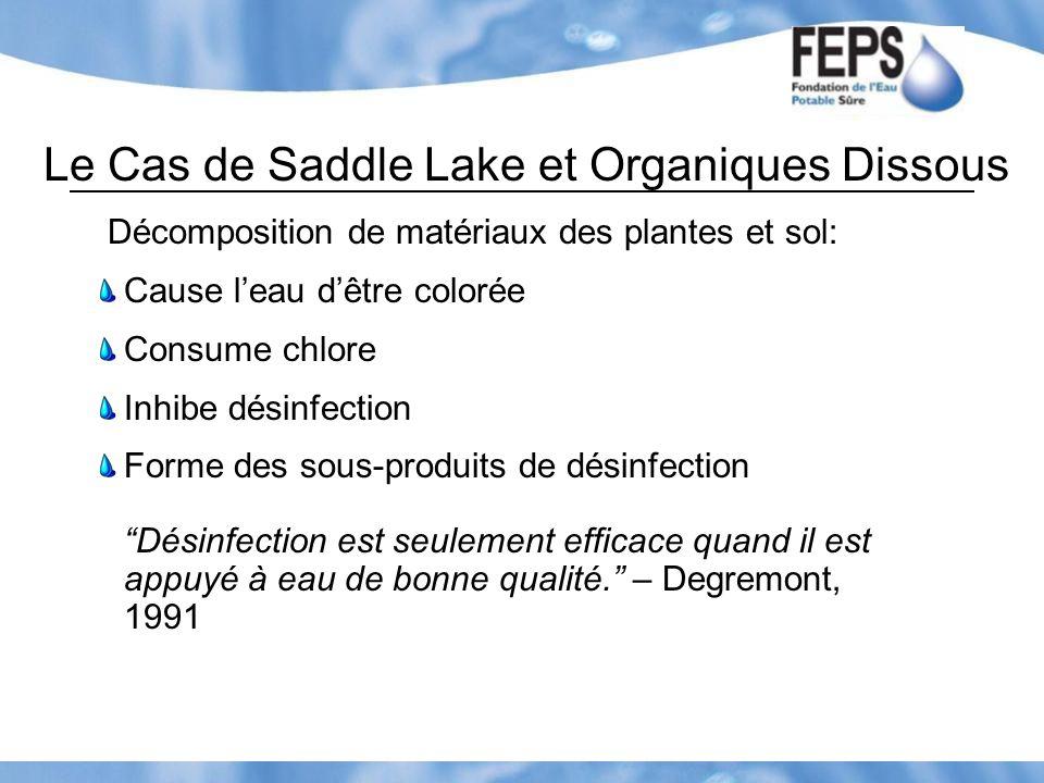 Le Cas de Saddle Lake et Organiques Dissous Décomposition de matériaux des plantes et sol: Cause leau dêtre colorée Consume chlore Inhibe désinfection