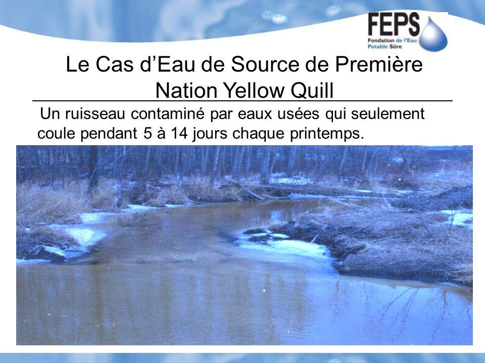 Le Cas dEau de Source de Première Nation Yellow Quill Un ruisseau contaminé par eaux usées qui seulement coule pendant 5 à 14 jours chaque printemps.