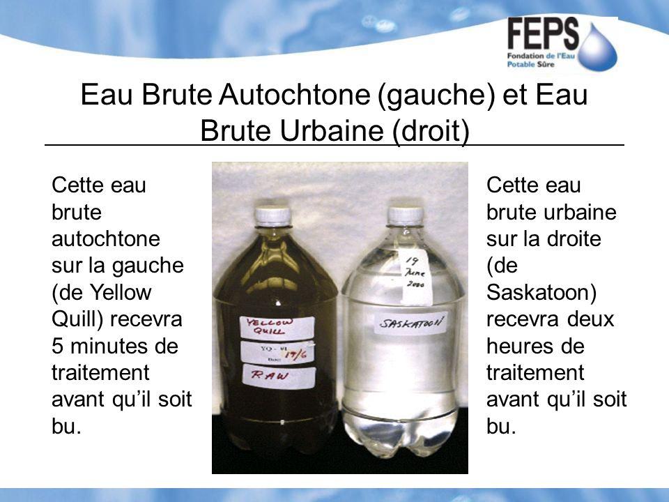 Eau Brute Autochtone (gauche) et Eau Brute Urbaine (droit) Cette eau brute autochtone sur la gauche (de Yellow Quill) recevra 5 minutes de traitement