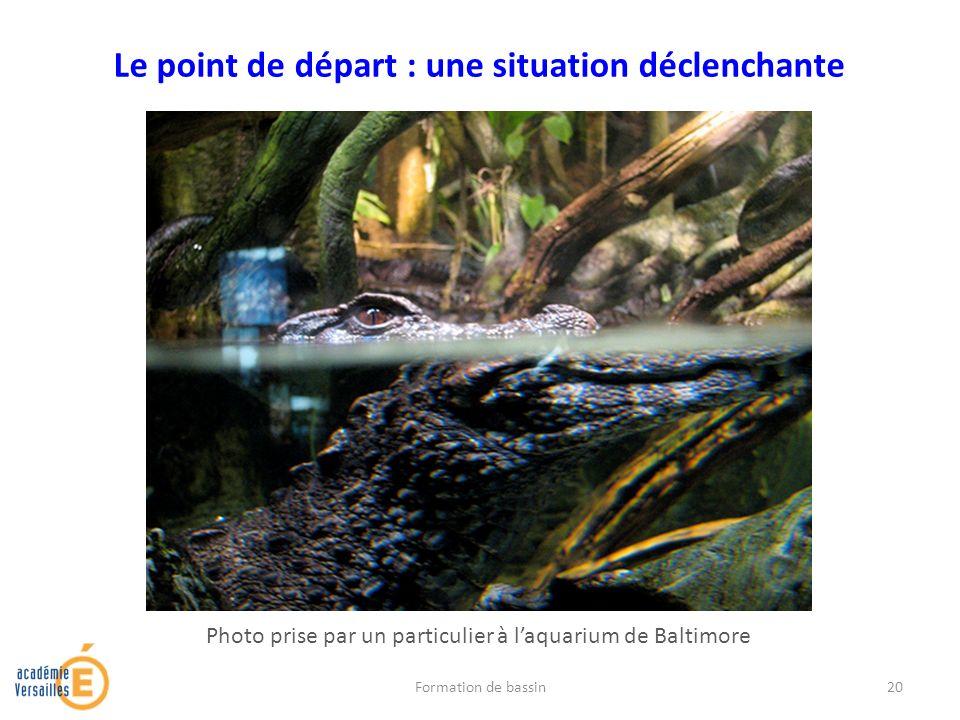 Le point de départ : une situation déclenchante Photo prise par un particulier à laquarium de Baltimore Formation de bassin20