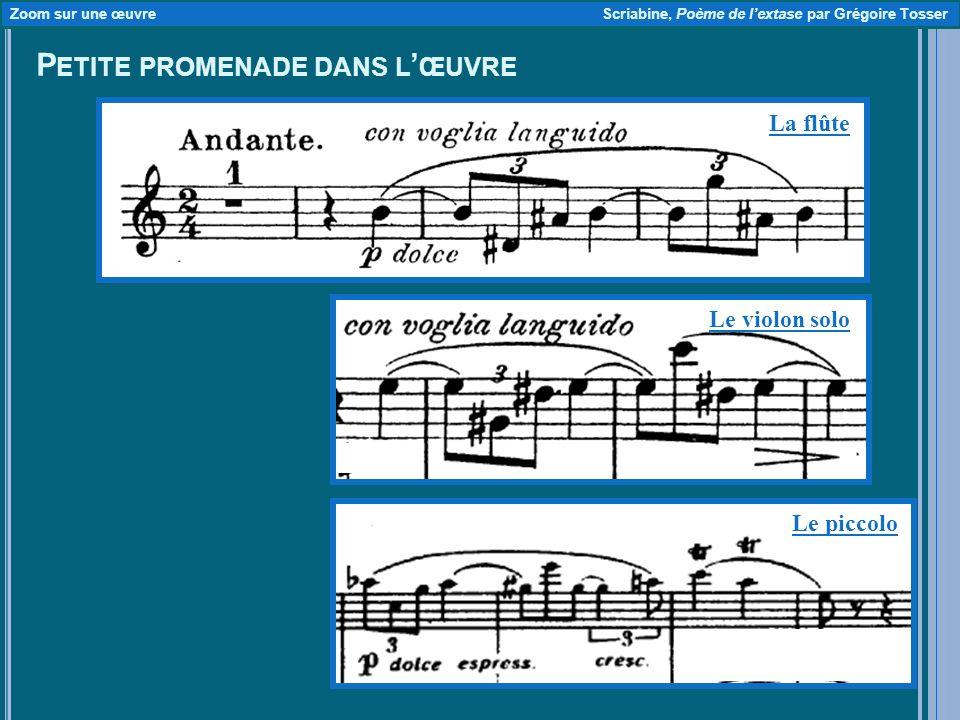 P ETITE PROMENADE DANS L ŒUVRE Zoom sur une œuvre Scriabine, Poème de lextase par Grégoire Tosser La flûte Le violon solo Le piccolo