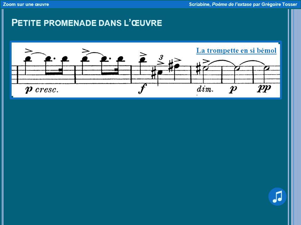 P ETITE PROMENADE DANS L ŒUVRE Zoom sur une œuvre Scriabine, Poème de lextase par Grégoire Tosser La trompette en si bémol