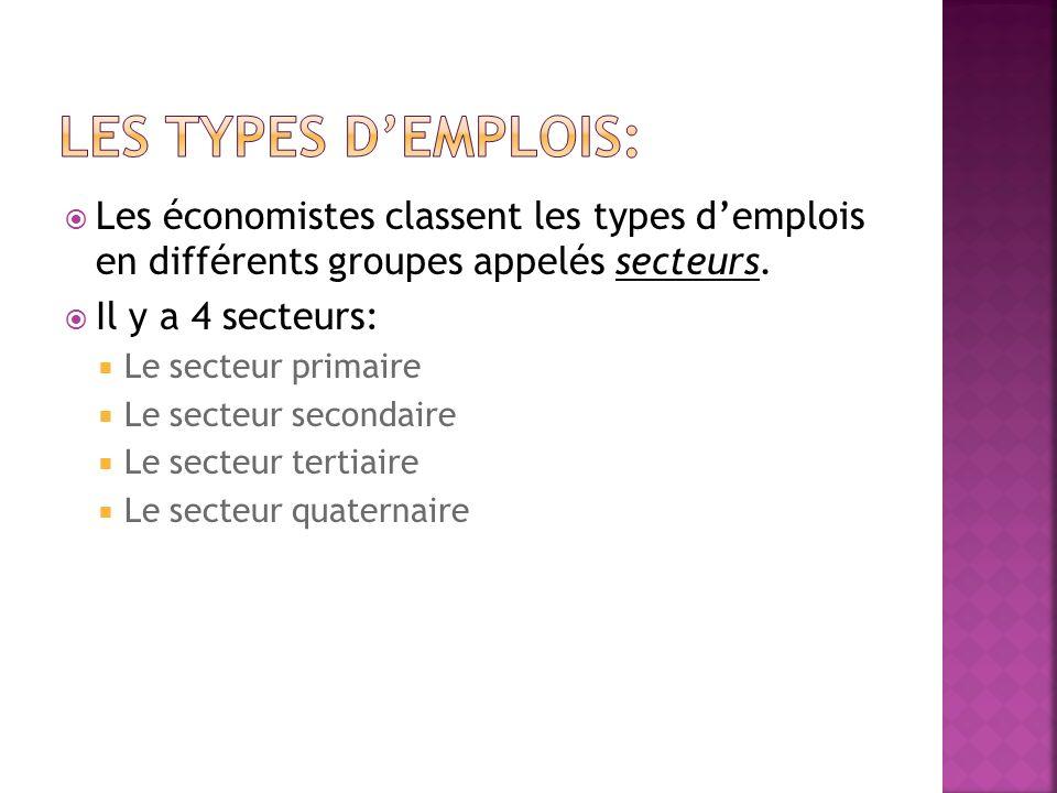 Les économistes classent les types demplois en différents groupes appelés secteurs.