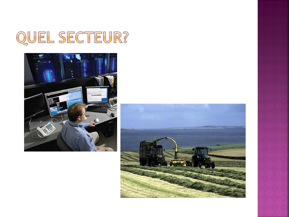 Le secteur Les exemples des travaux dans le secteur Le secteur primaire Le secteur secondaire Le secteur tertiaire Le secteur quaternaire