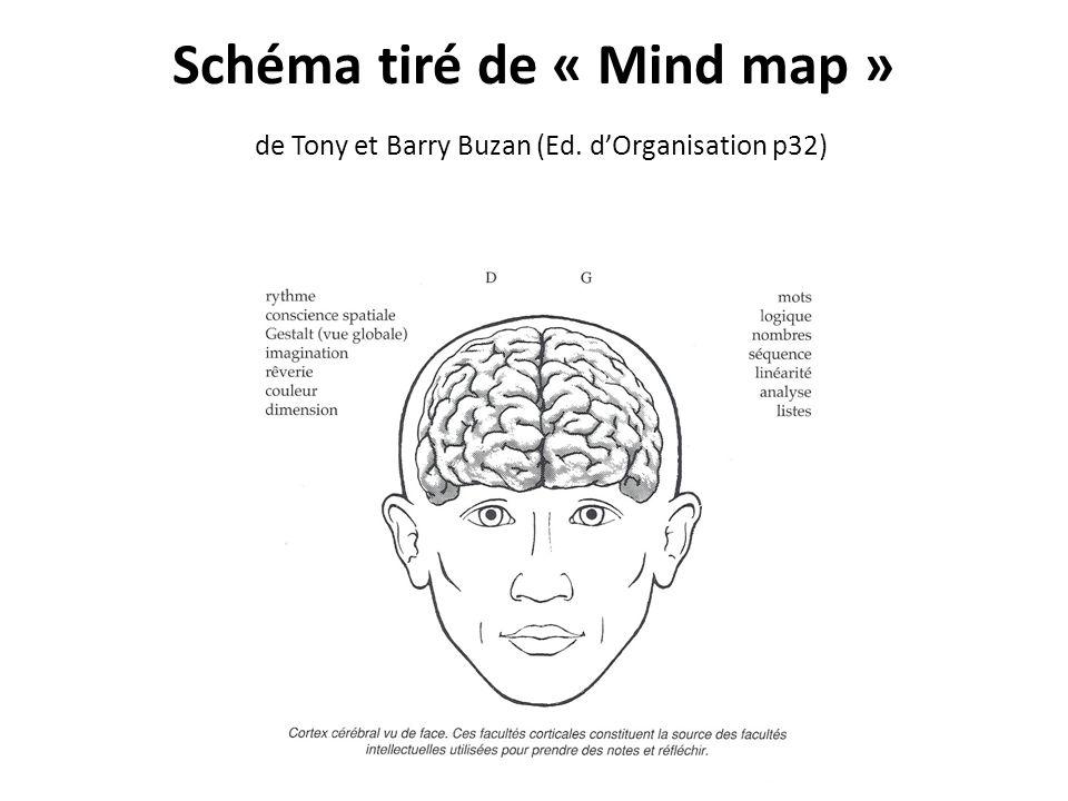 Schéma tiré de « Mind map » de Tony et Barry Buzan (Ed. dOrganisation p32)
