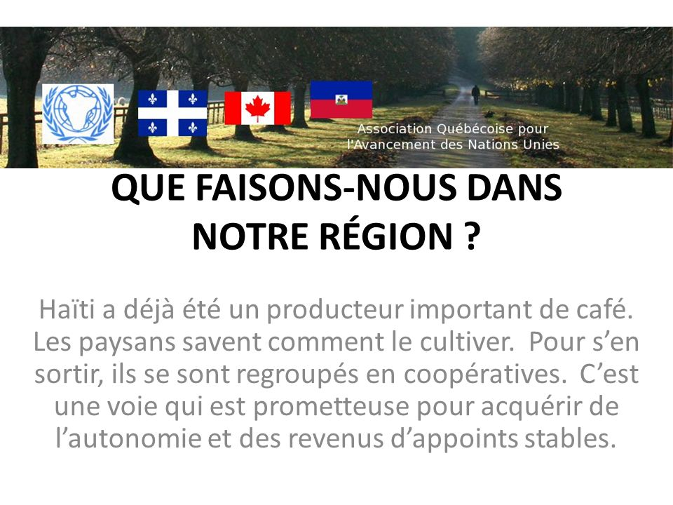 QUE FAISONS-NOUS DANS NOTRE RÉGION ? Haïti a déjà été un producteur important de café. Les paysans savent comment le cultiver. Pour sen sortir, ils se