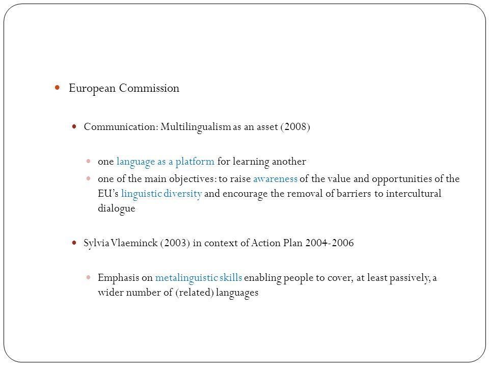 Metalinguistic awareness / skills in RML settings