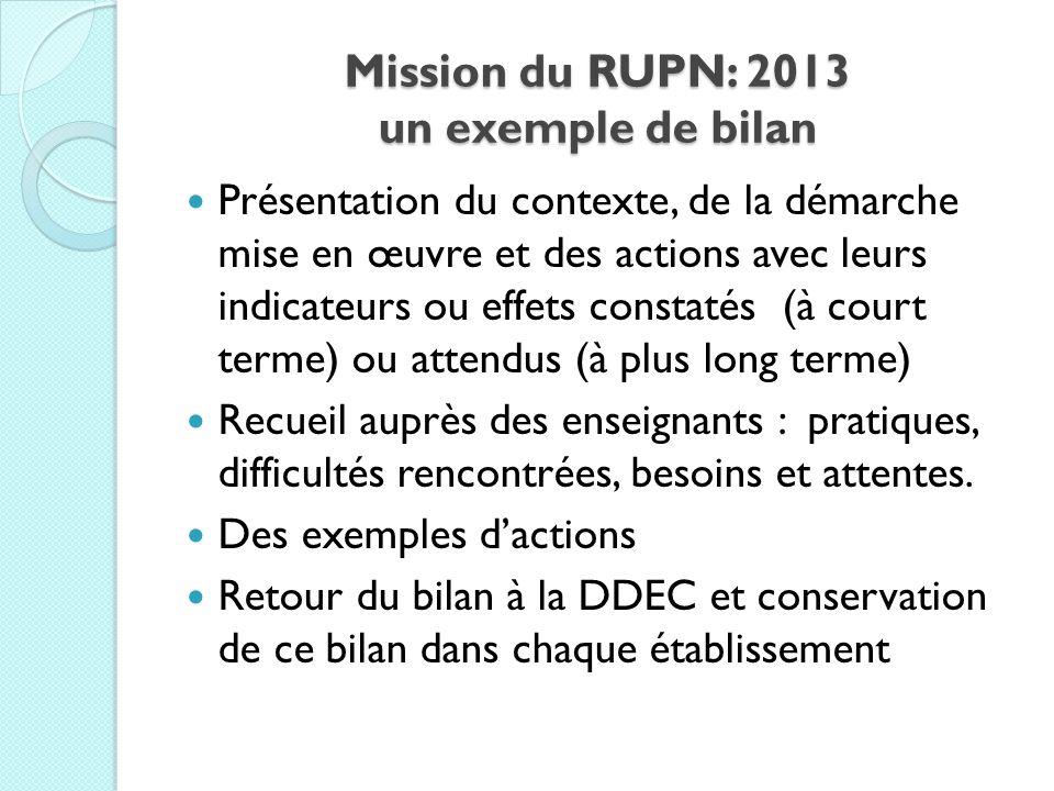 Mission du RUPN: 2013 un exemple de bilan Présentation du contexte, de la démarche mise en œuvre et des actions avec leurs indicateurs ou effets const