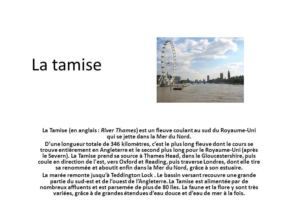 La tamise La Tamise (en anglais : River Thames) est un fleuve coulant au sud du Royaume-Uni qui se jette dans la Mer du Nord. Dune longueur totale de