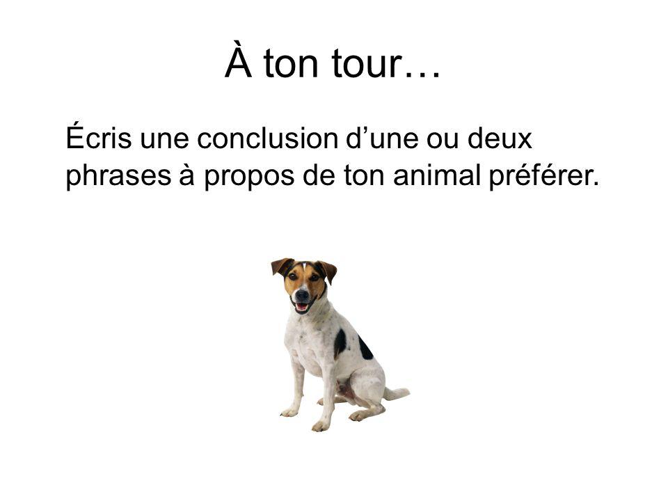 À ton tour… Écris une conclusion dune ou deux phrases à propos de ton animal préférer.