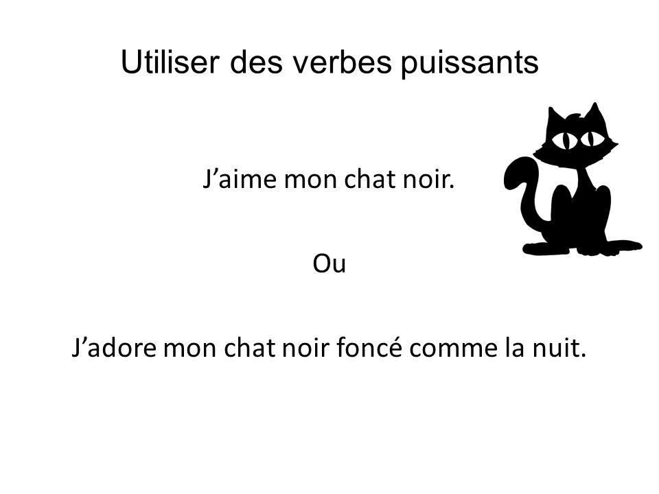 Utiliser des verbes puissants Jaime mon chat noir. Ou Jadore mon chat noir foncé comme la nuit.
