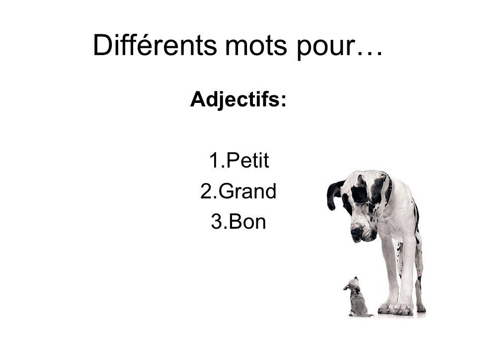 Différents mots pour… Adjectifs: 1.Petit 2.Grand 3.Bon
