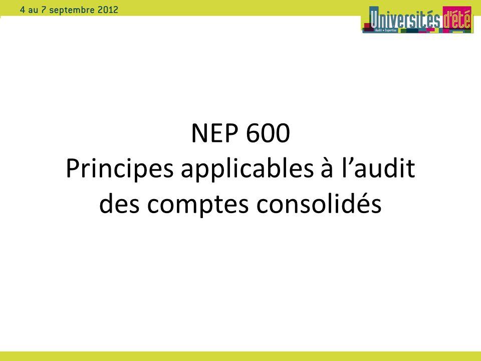 NEP 600 Principes applicables à laudit des comptes consolidés