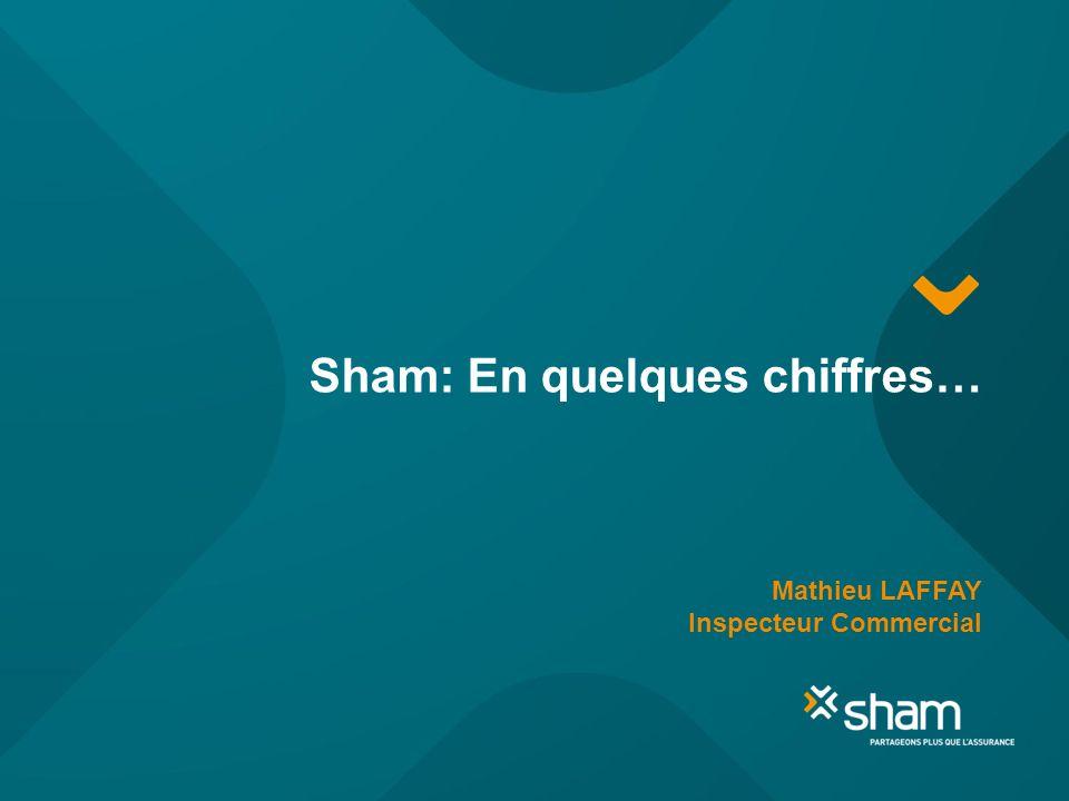 Sham: En quelques chiffres… Mathieu LAFFAY Inspecteur Commercial
