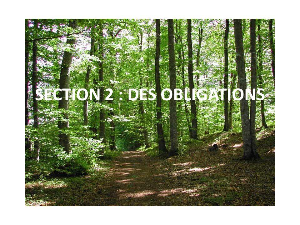 SECTION 2 : DES OBLIGATIONS