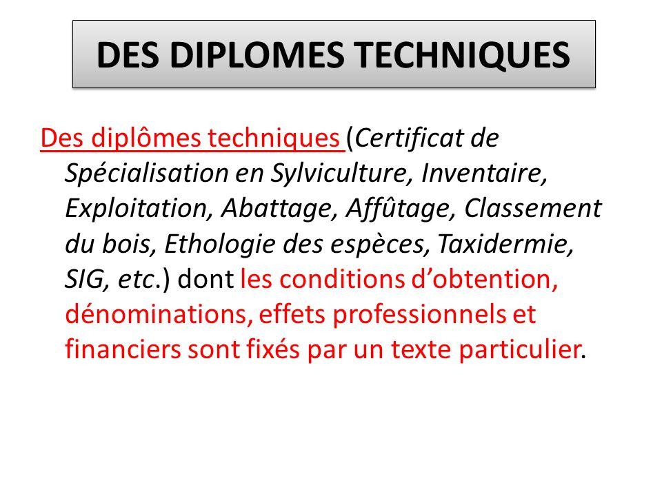 DES DIPLOMES TECHNIQUES Des diplômes techniques (Certificat de Spécialisation en Sylviculture, Inventaire, Exploitation, Abattage, Affûtage, Classemen