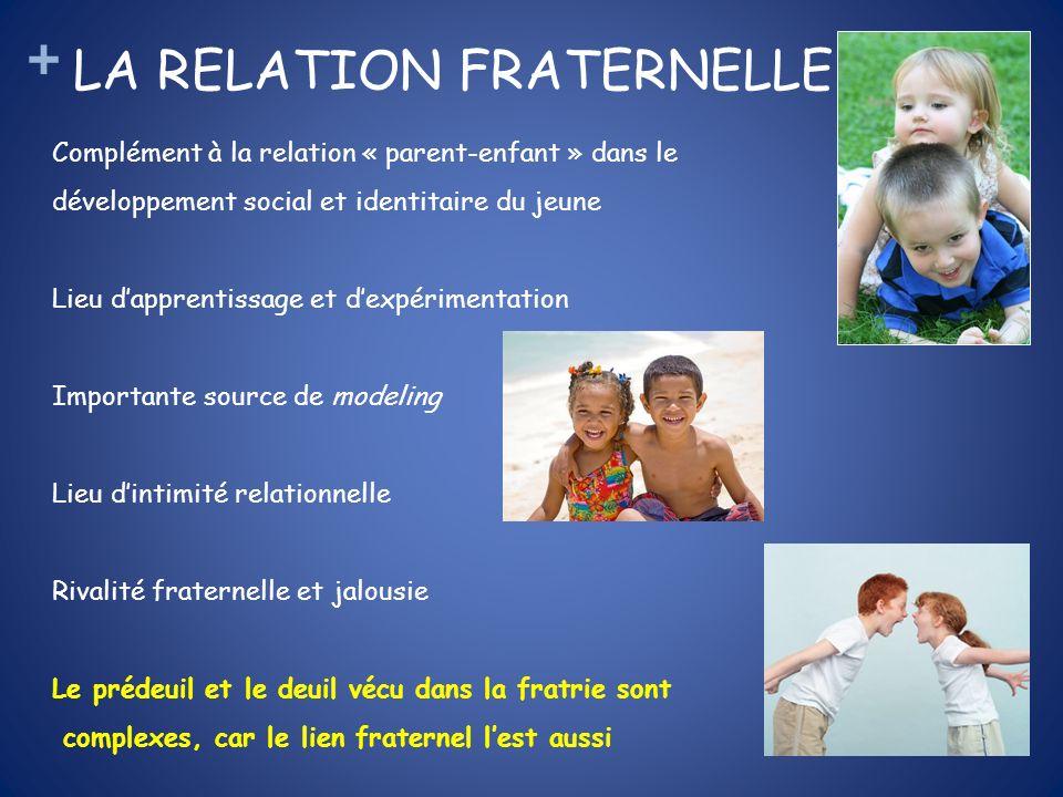 + LA RELATION FRATERNELLE Complément à la relation « parent-enfant » dans le développement social et identitaire du jeune Lieu dapprentissage et dexpé