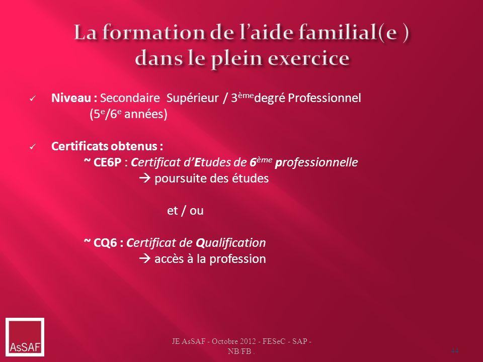 Niveau : Secondaire Supérieur / 3 ème degré Professionnel (5 e /6 e années) Certificats obtenus : ~ CE6P : Certificat dEtudes de 6 ème professionnelle