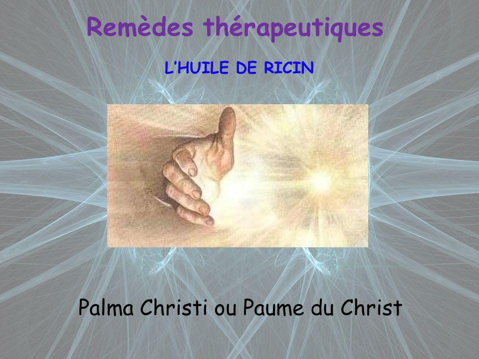 Remèdes thérapeutiques LHUILE DE RICIN Palma Christi ou Paume du Christ