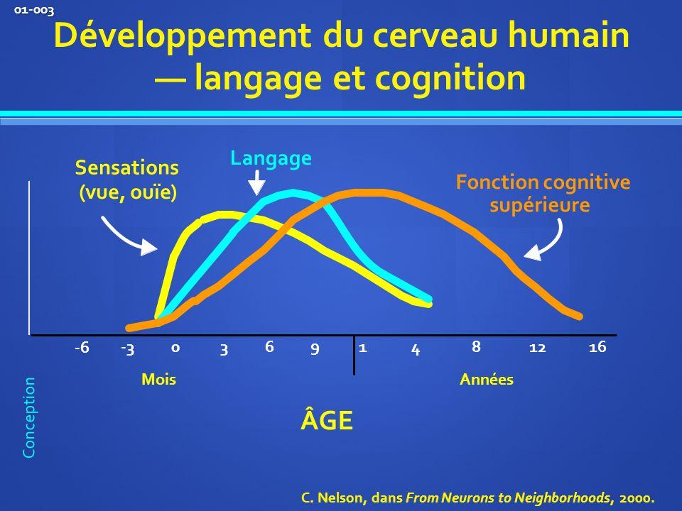 0 1 481216 ÂGE Développement du cerveau humain langage et cognition Sensations (vue, ouïe) Langage Fonction cognitive supérieure 3 6 9 -3 -6 MoisAnnées C.