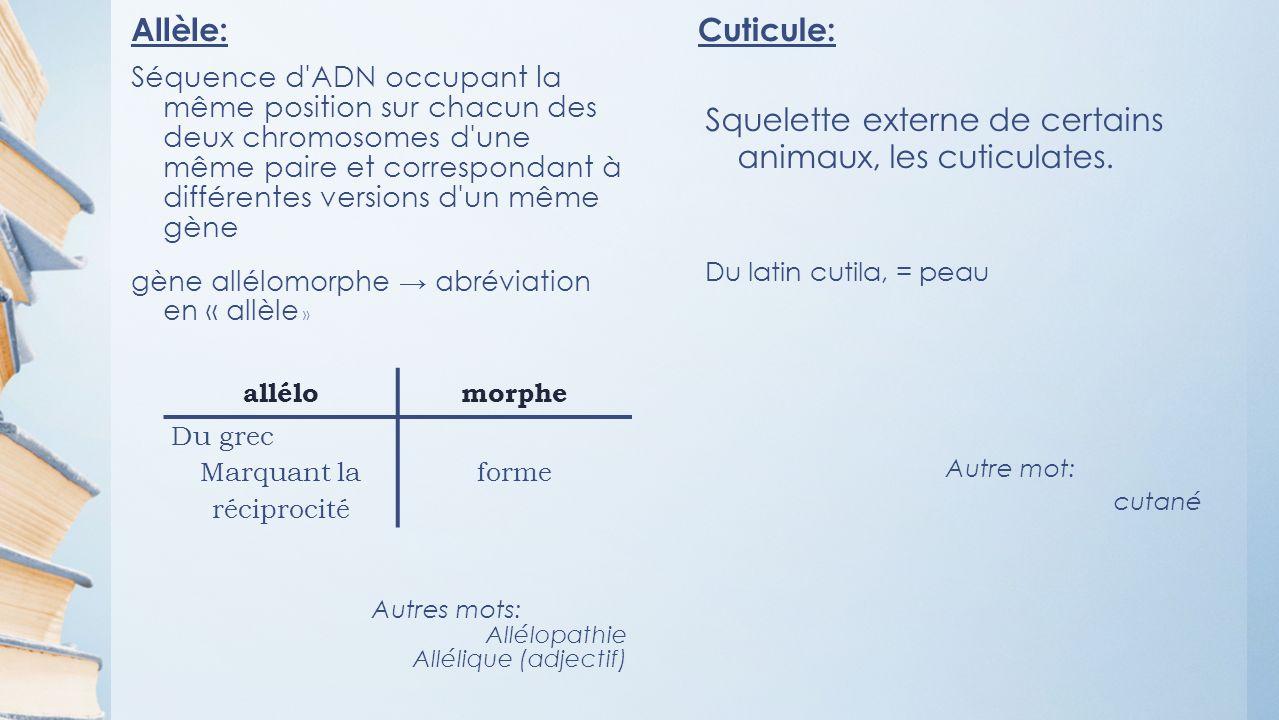 Allèle: Séquence d ADN occupant la même position sur chacun des deux chromosomes d une même paire et correspondant à différentes versions d un même gène gène allélomorphe abréviation en « allèle » Autres mots: Allélopathie Allélique (adjectif) Cuticule: Squelette externe de certains animaux, les cuticulates.