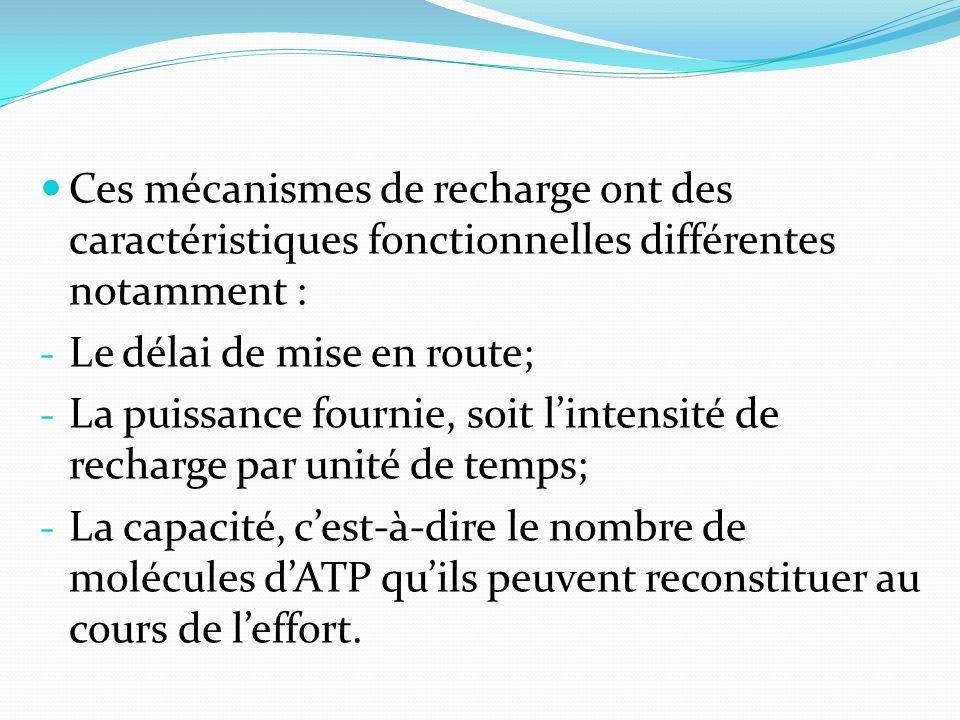 Ces mécanismes de recharge ont des caractéristiques fonctionnelles différentes notamment : - Le délai de mise en route; - La puissance fournie, soit l