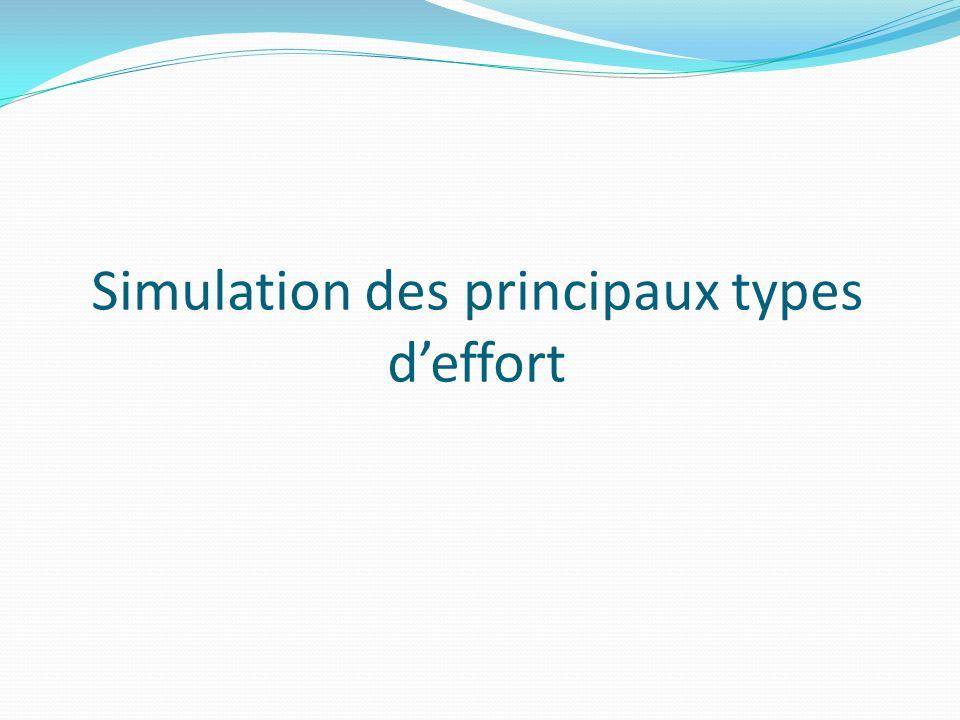 Simulation des principaux types deffort