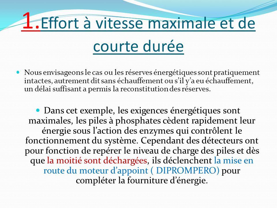 1. Effort à vitesse maximale et de courte durée Nous envisageons le cas ou les réserves énergétiques sont pratiquement intactes, autrement dit sans éc