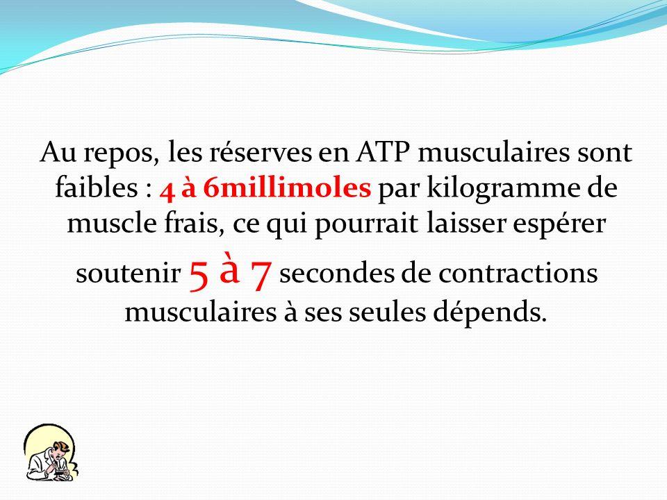 Au repos, les réserves en ATP musculaires sont faibles : 4 à 6millimoles par kilogramme de muscle frais, ce qui pourrait laisser espérer soutenir 5 à