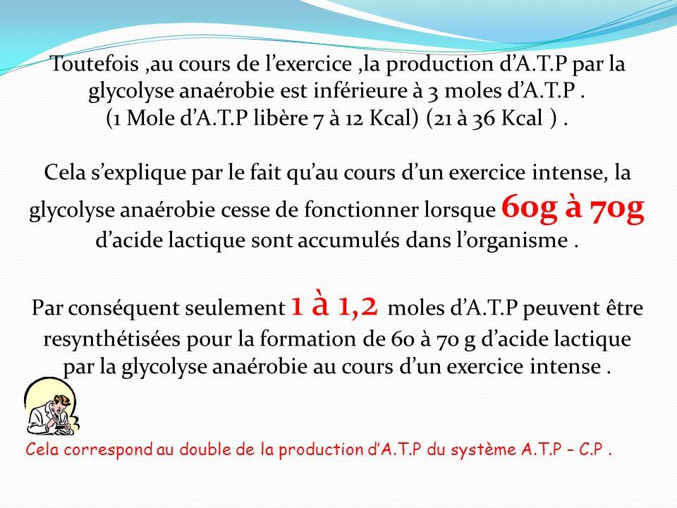 Toutefois,au cours de lexercice,la production dA.T.P par la glycolyse anaérobie est inférieure à 3 moles dA.T.P. (1 Mole dA.T.P libère 7 à 12 Kcal) (2