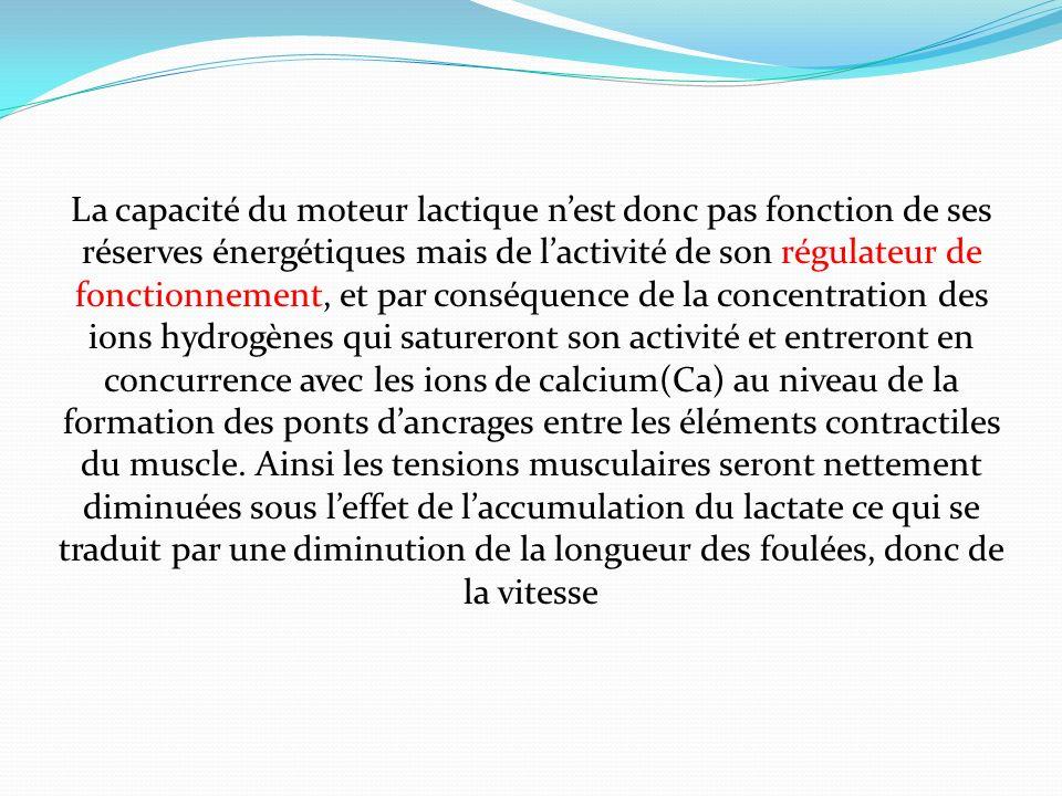 La capacité du moteur lactique nest donc pas fonction de ses réserves énergétiques mais de lactivité de son régulateur de fonctionnement, et par consé